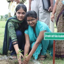 2013-TREE PLANTATION