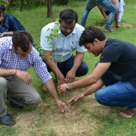 Tree Plantation Programme 2018